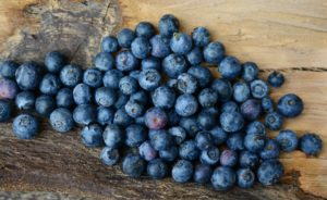 Farbe Blau Wirkung Beeren