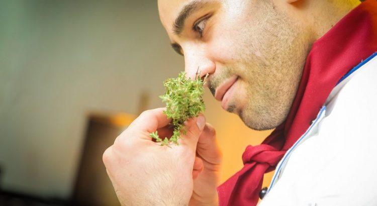 Aromatherapie Duft Kräuter Geruch riechen Koch