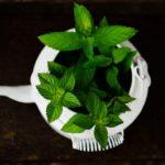 Pefferminze Tee Duft Öl Aroma
