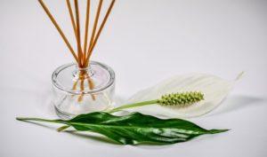 aromatherapie nutzen wirkung