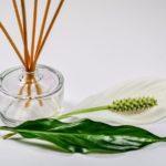 Aromatische Düfte & ätherische Öle – Anwendung: Möglichkeiten, Tipps & Tricks