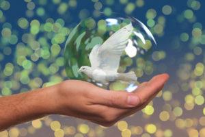 Metta Sutta Frieden