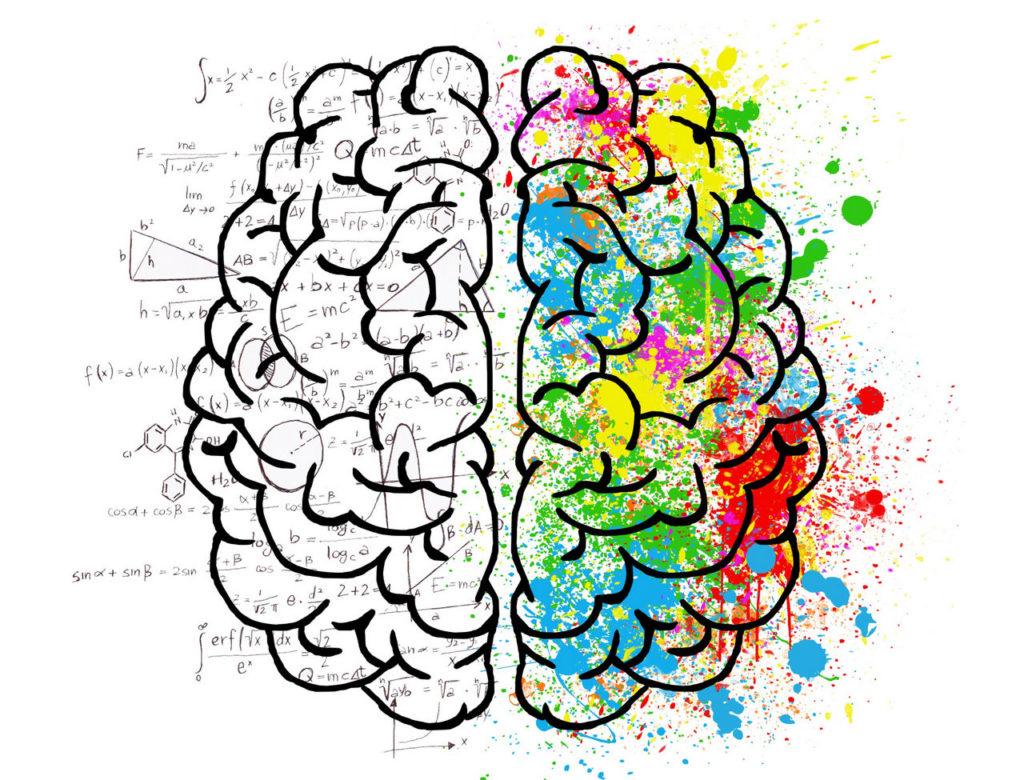 Gehirnfunktion Training