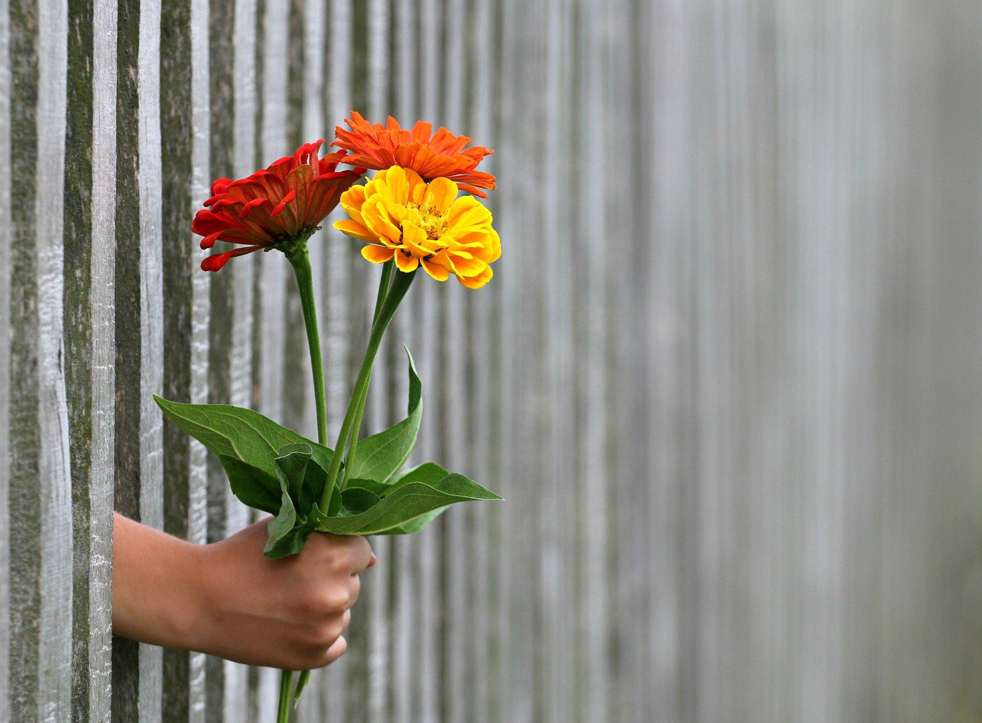 Blumenstrauß als Geschenk